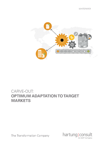 4.SNP Carve-out Optimum Adaptation To Target Markets_Page_1.png