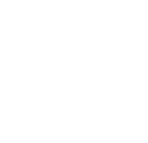SNP_AG_Logo_500px_weiss_web.png